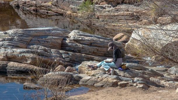 Ned's Nature Walk 02-12-14-0027 blog