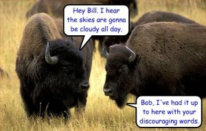 Buffalo securedownload