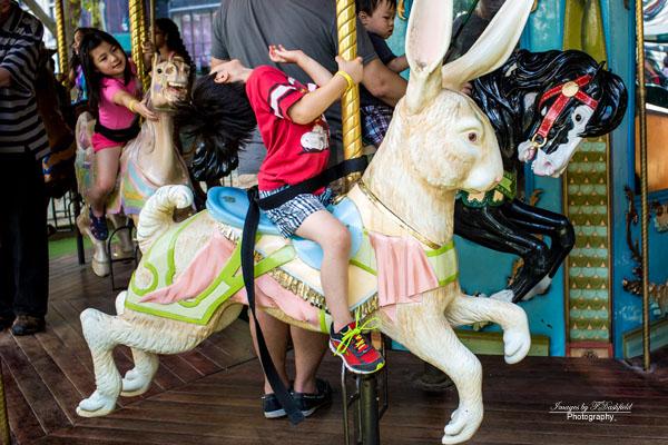 Bunny ride 7638
