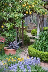 garden bdd4454a1ee5e8005080ed13002c6a49